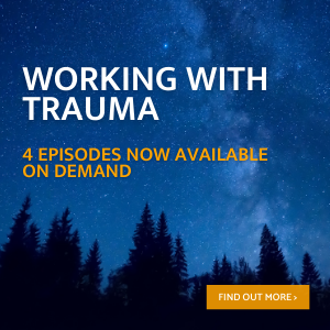 working with trauma training